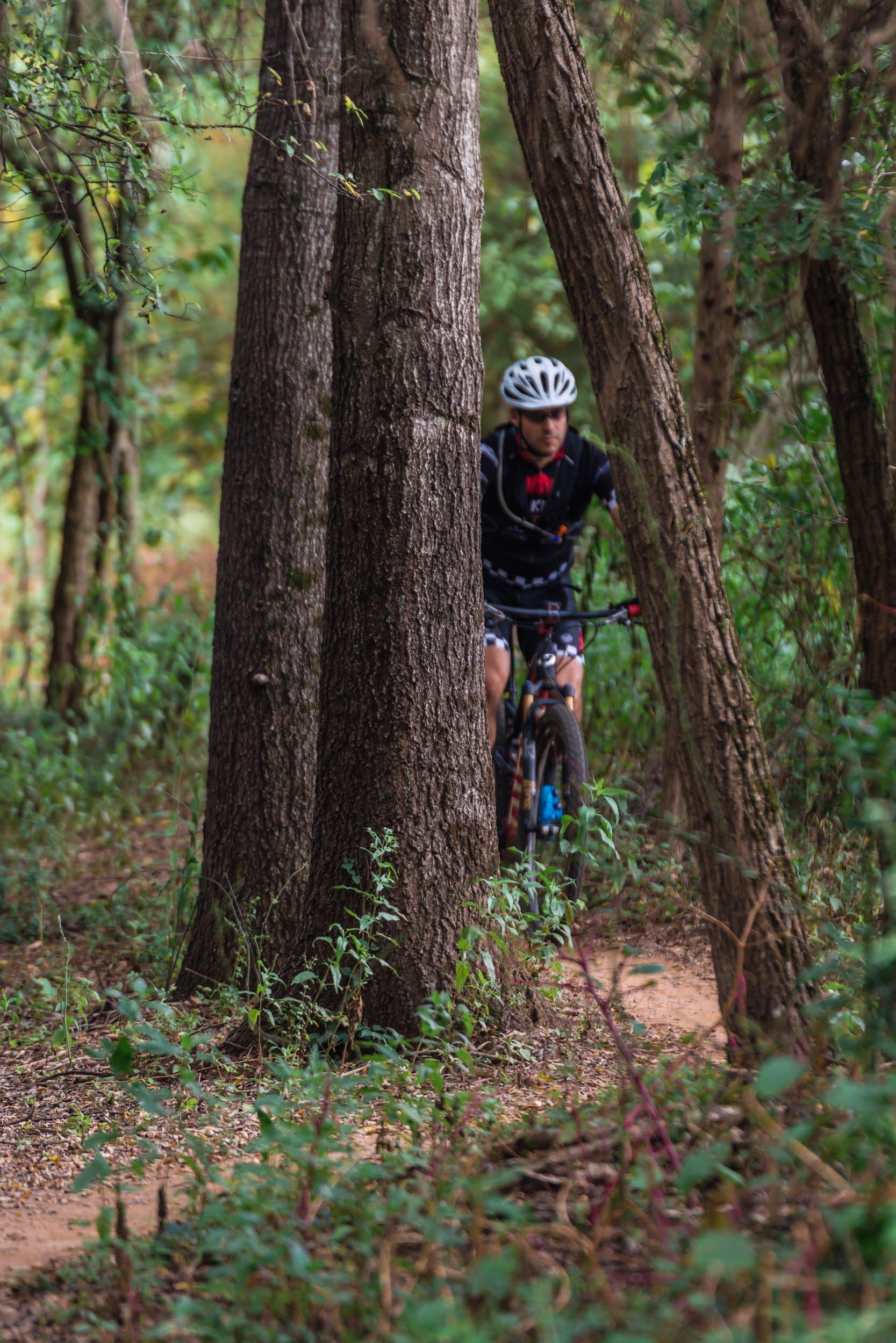ASCGreenway Treeshaker Sept 1-462