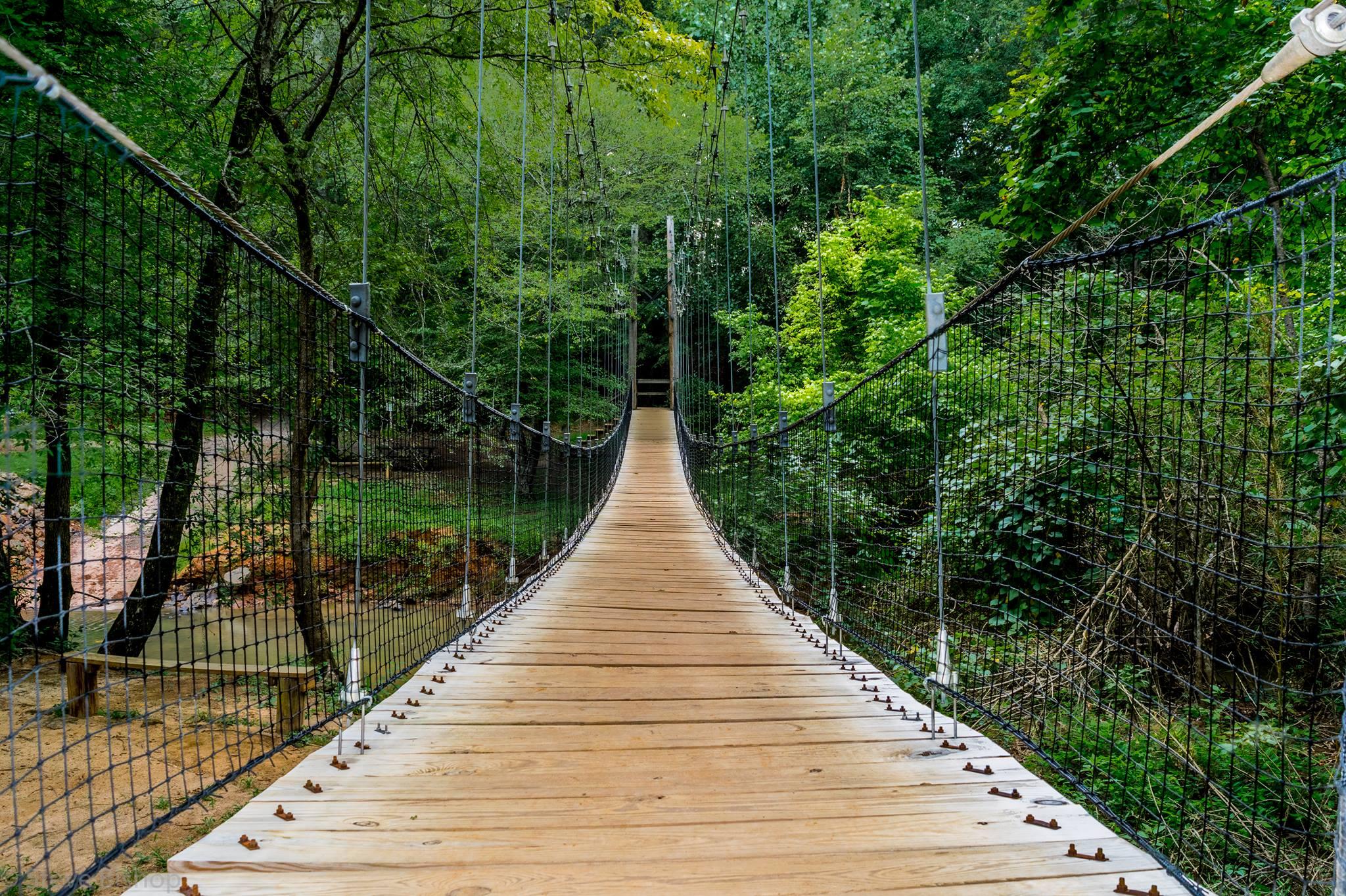 Suspension bridge at Anne Springs Close Greenway