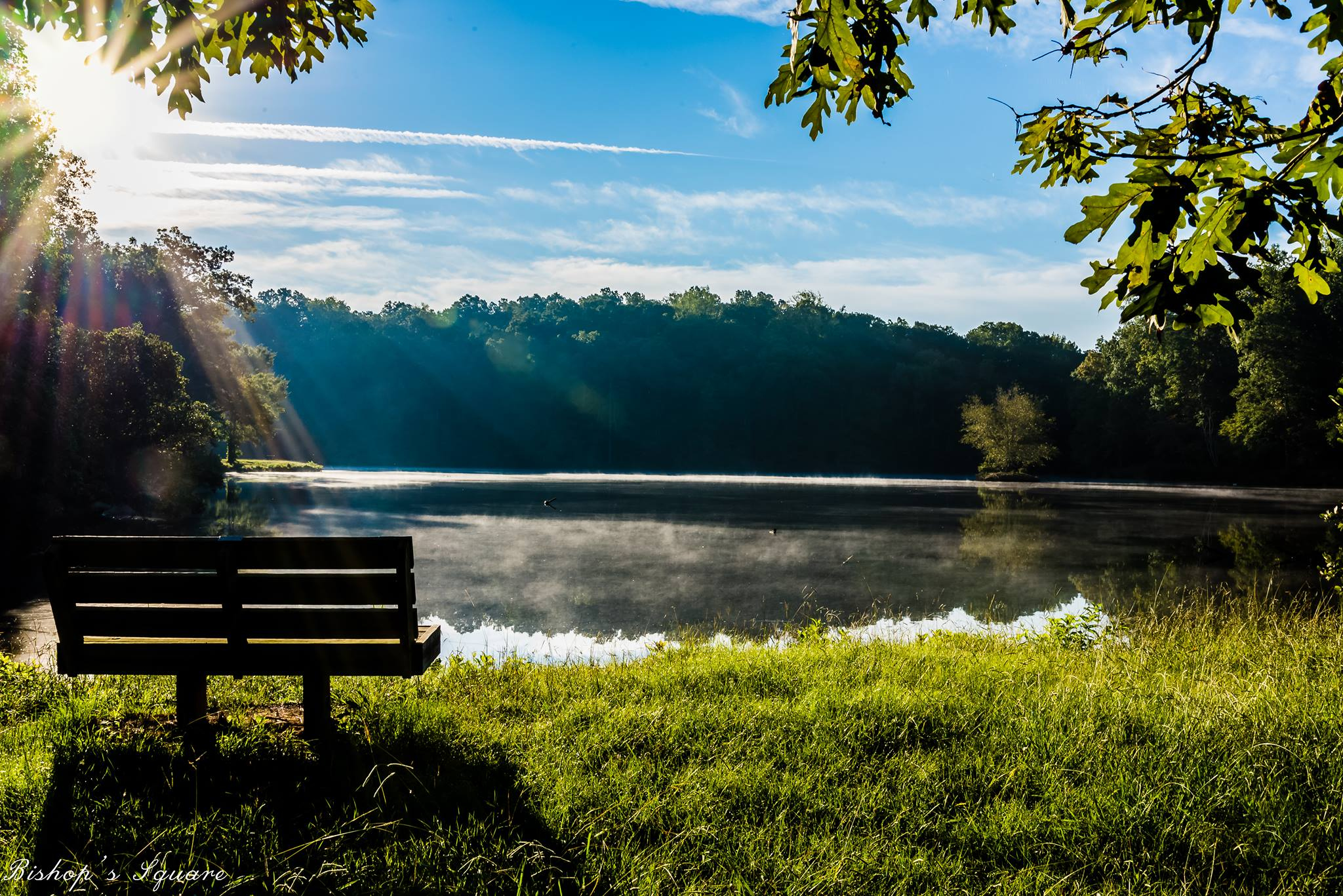 Bench by a tranquil lake