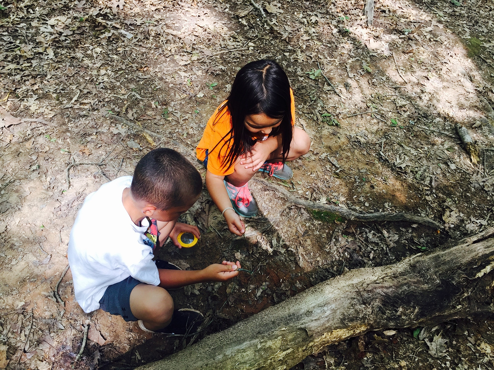 Kids exploring the outdoors