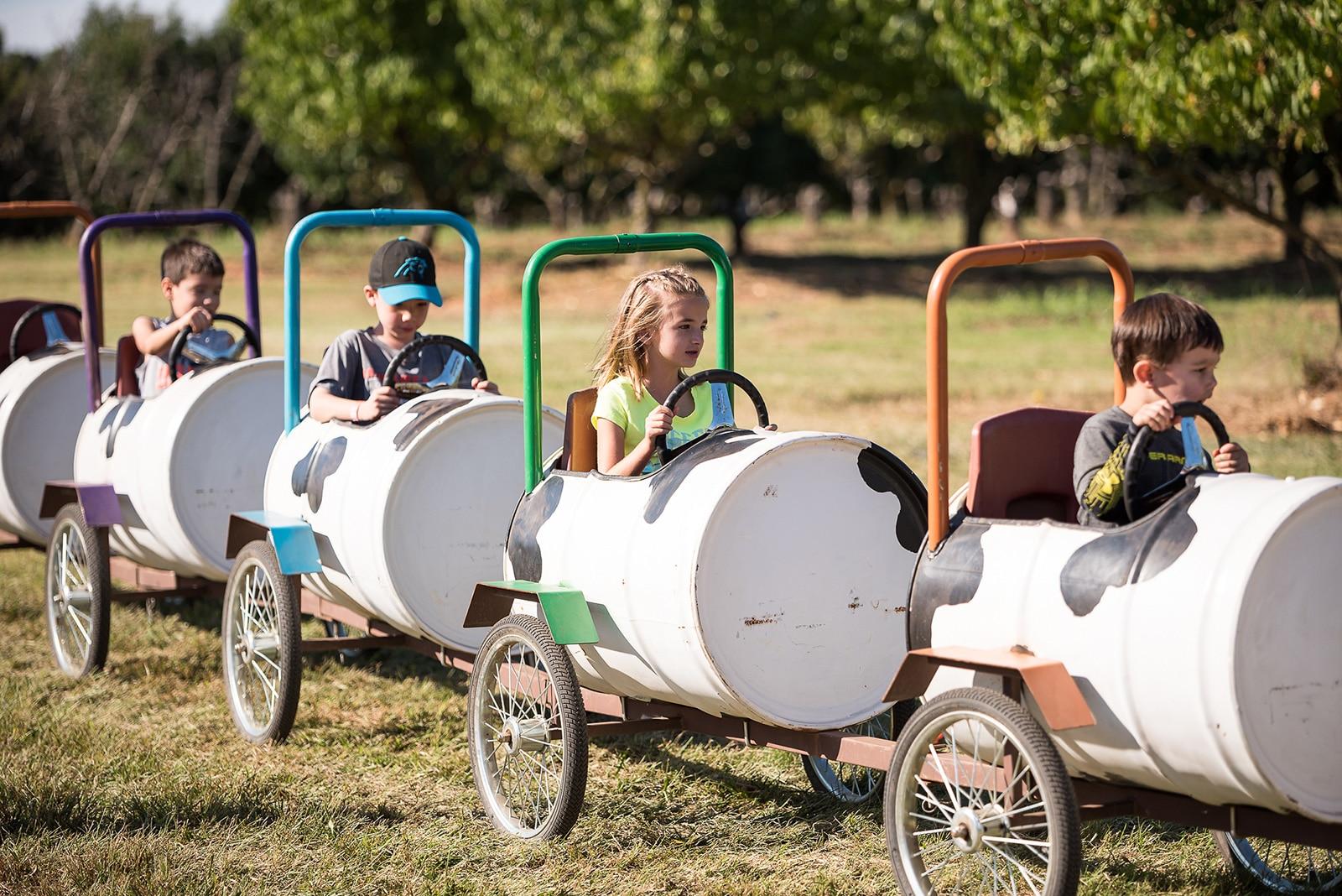 Kids riding cow train at Fall Frolic