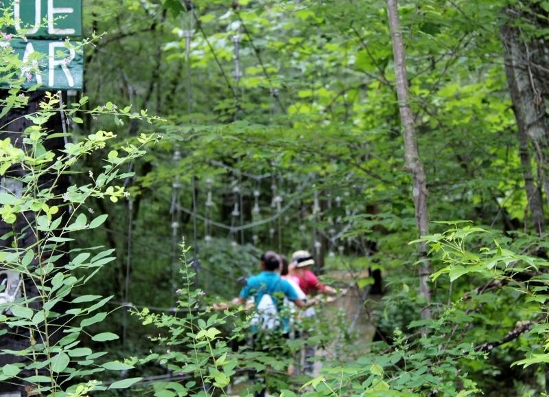 Hiking club crossing suspension bridge