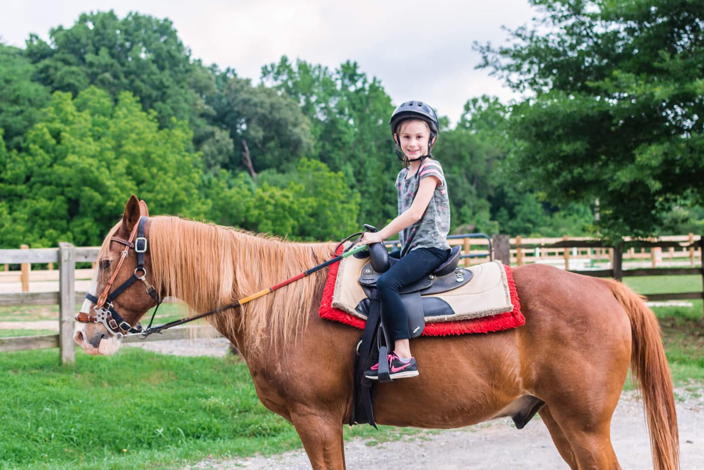 Horseback Riding Anne Springs Close Greenway