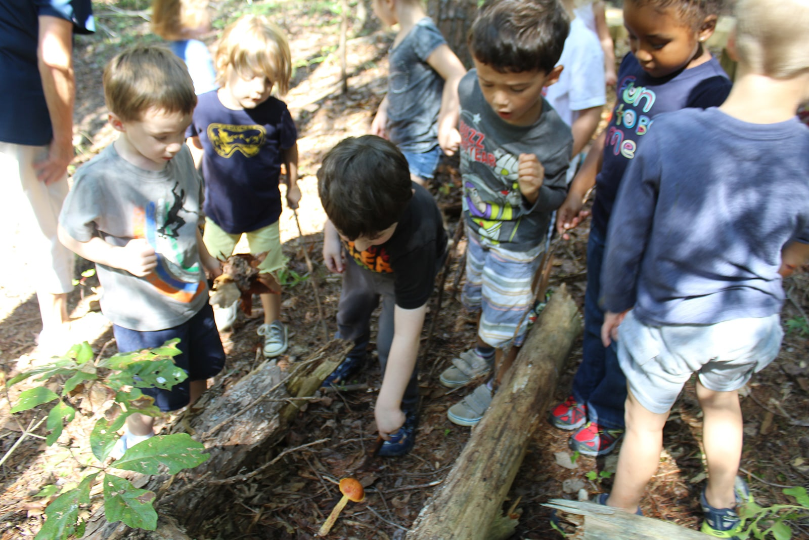 Kids exploring nature at outdoor preschool