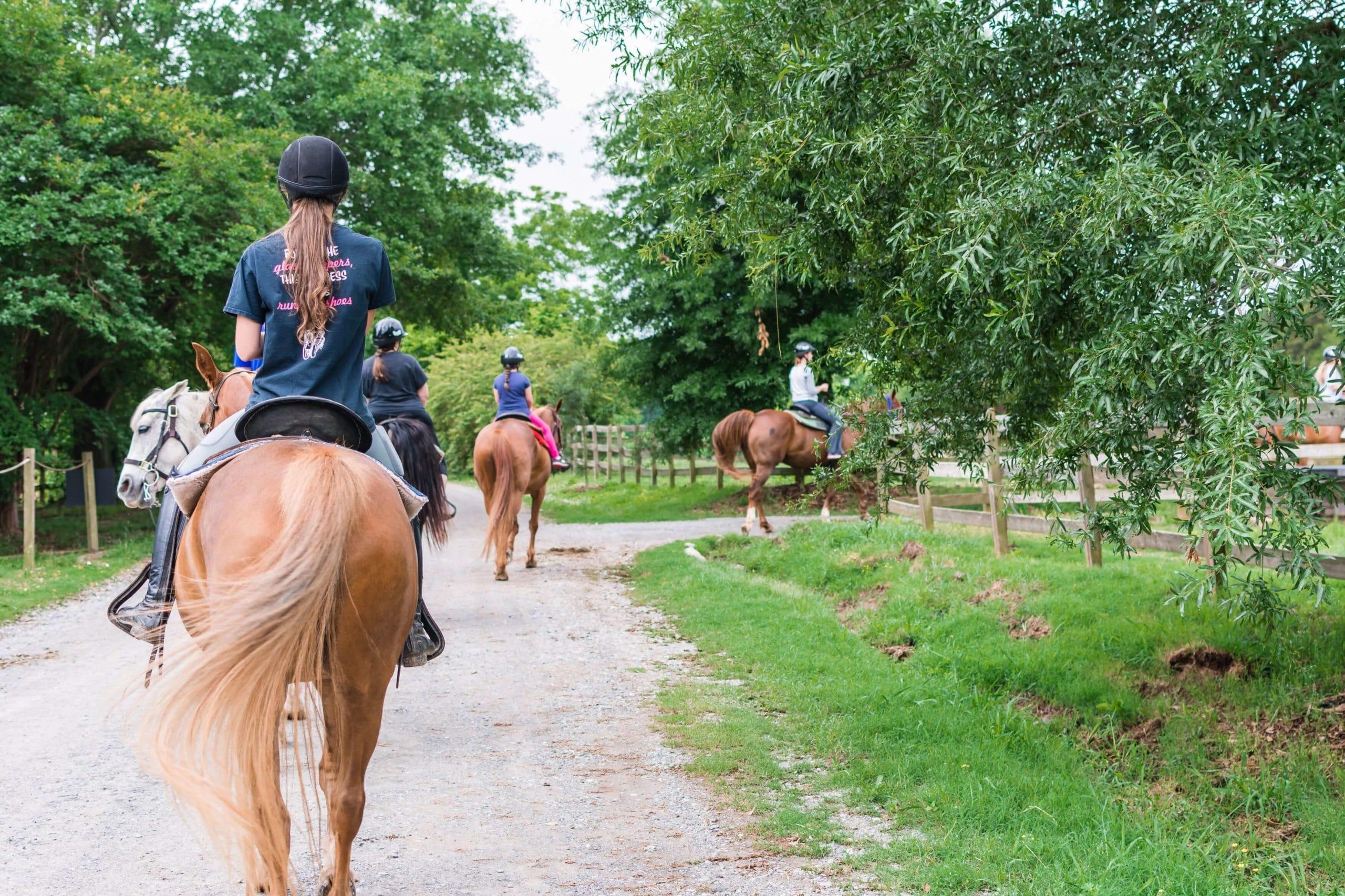 Girls riding horses down path