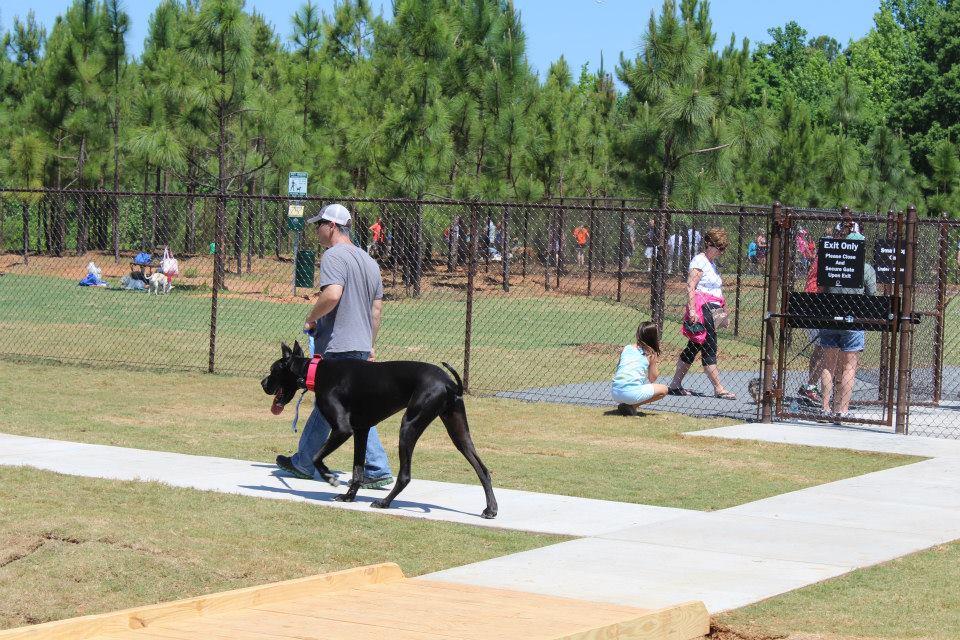 Man walking in witha dog to Mary Warner Mack Dog Park