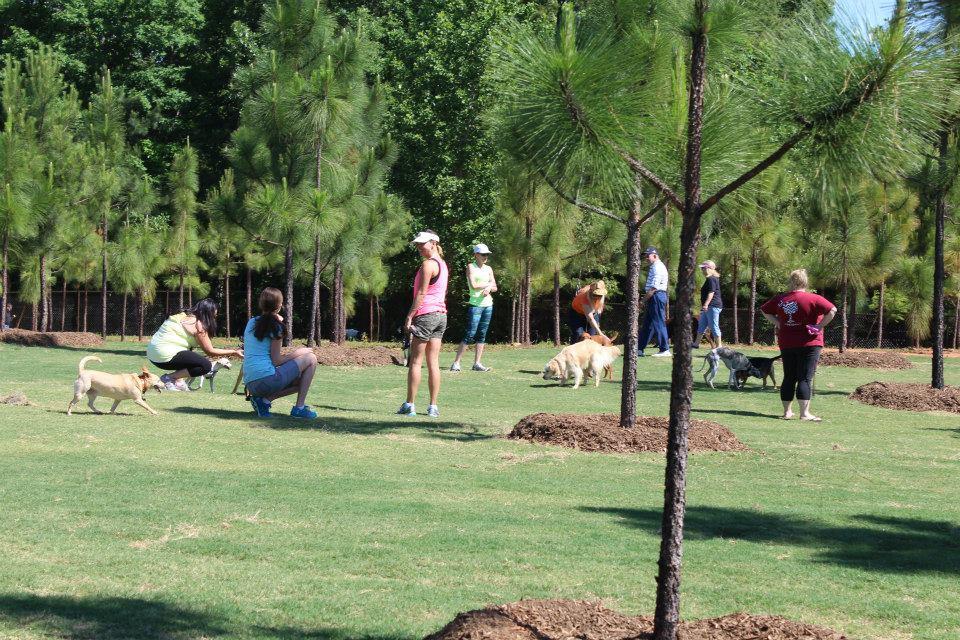 Mary Warner Mack Dog Park