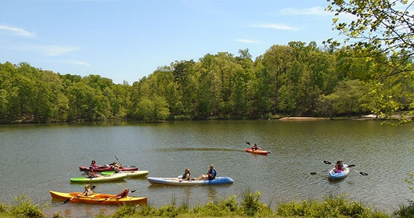 Group of children kayaking on the greenway