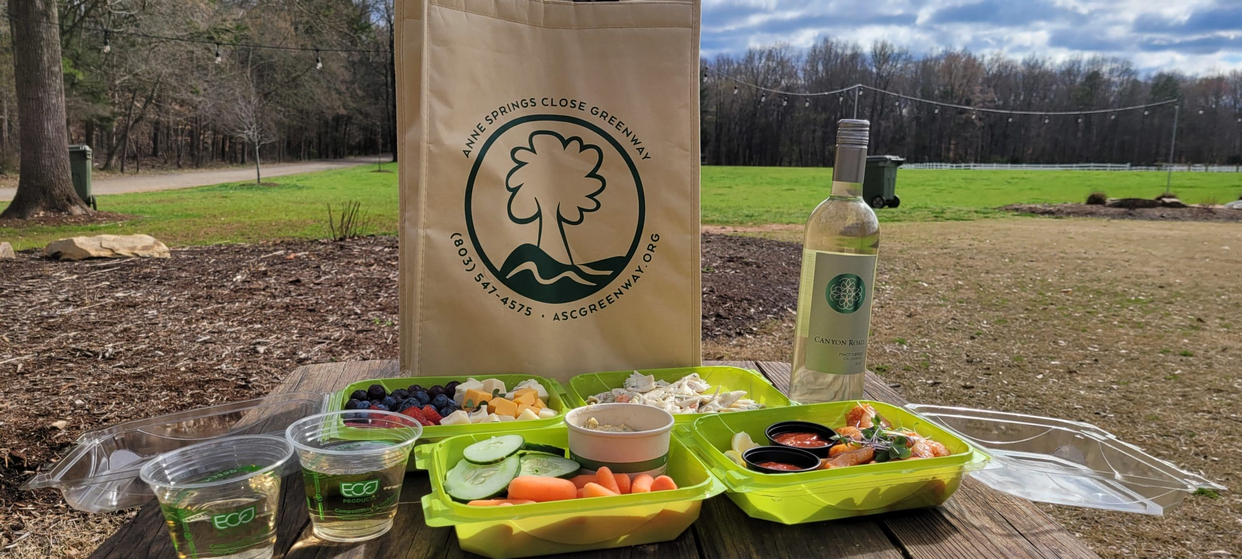 Anne Springs Close Greenway Picnic