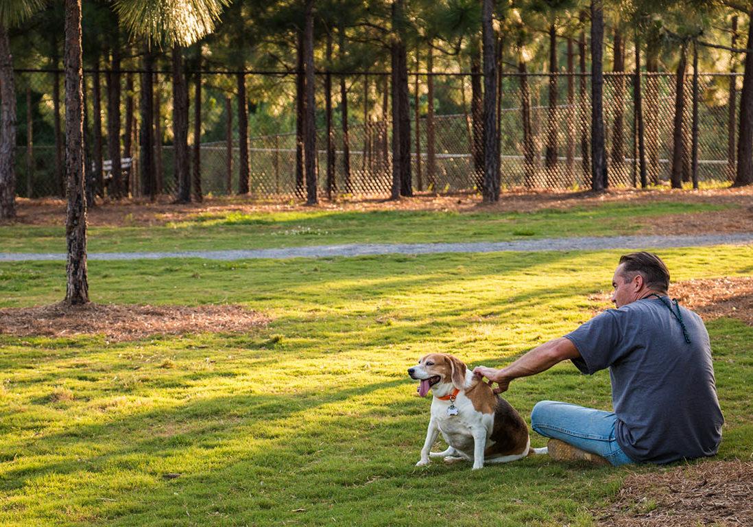 yappy hour, dog park, beagle, pup, dog